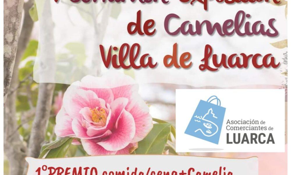 corteo-acl-certame-camelias-2020-luarca
