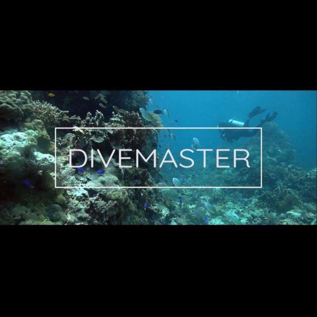 Presentación documental DIVEMASTER