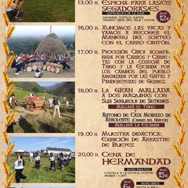 II Festival de la hierba seca, el trigo y la escanda