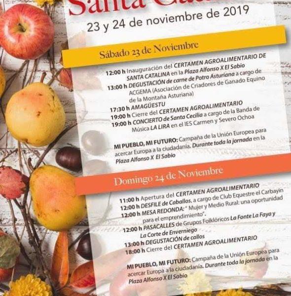Fiestas y Feria de Santa Catalina 2019