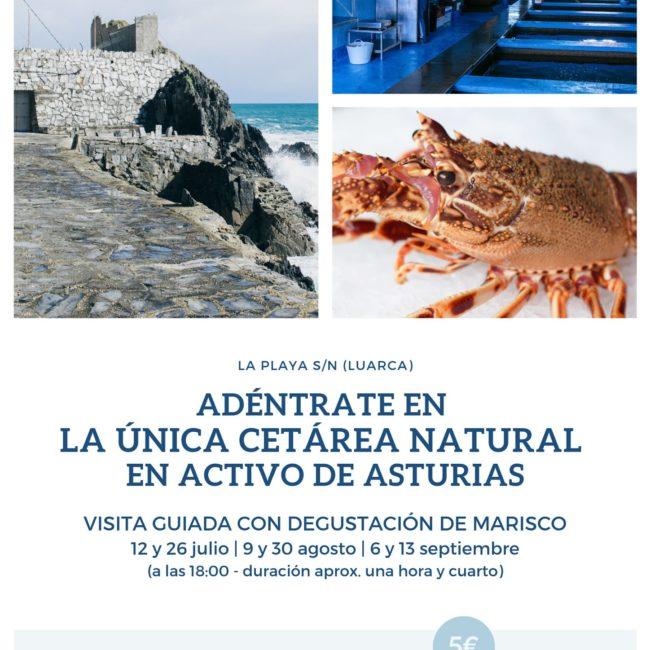 Visita Guiada a la Cetárea Sport